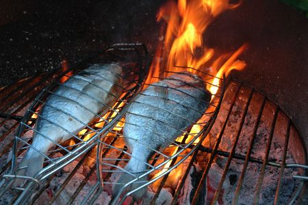 BBQ gilthead seabream  photo