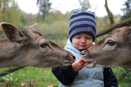 location shot: Little Boy in Deer-Park