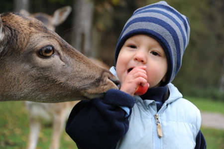 parc: Little Boy in Deer-Park