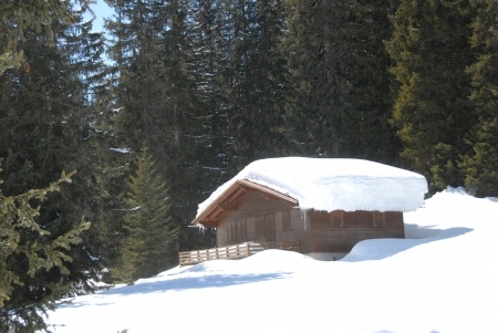 snowcovered cabin in the center of wood Stock Photo