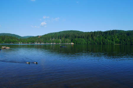 Lake titisee at the black forest in germany
