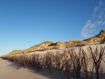 Erosion protectors at the sandy beach in Sylt