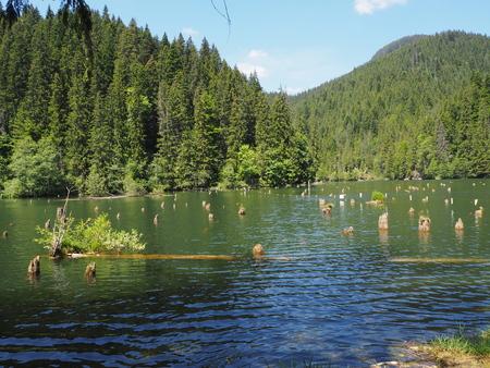 The red lake - Lacu Rosu in Romania Stock Photo