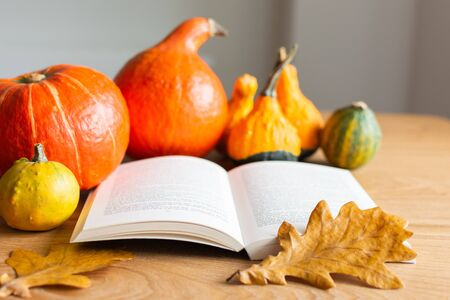 Autumn background with open book and orange pumpkins with leaves