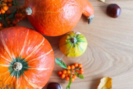 Autumn background with orange pumpkins and leaves and rowan and chestnut fruits Stock Photo