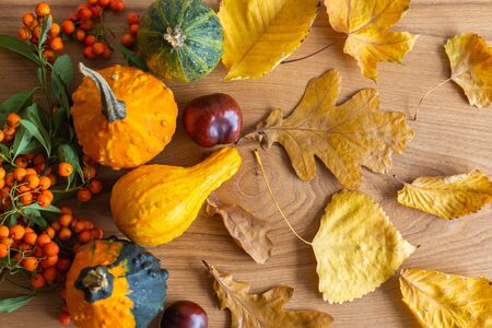 Fallen leaves of trees and chestnut fruits, decorative pumpkins and rowan on wooden background, autumn background Stock Photo - 131734549