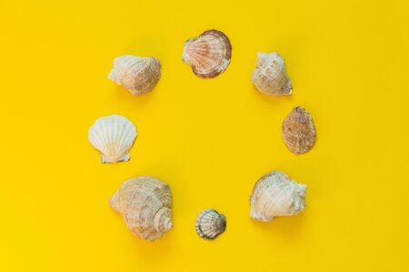 Variety of seashells on a yellow background, summer sea background, place for text in a circle, flat lay