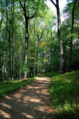 shadowed: Green shadowed trail near Harpers Ferry Stock Photo