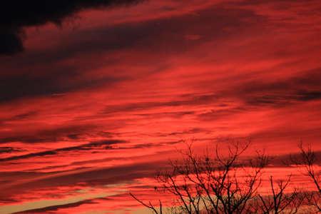 マサチューセッツ州の壮大なオレンジ日没 写真素材