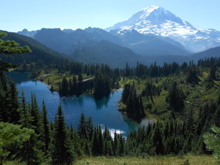rainier: Mt. Rainier National Park