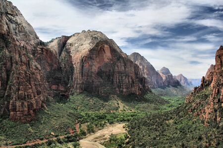 rocky mountain juniper: Canyon at Zion National Park