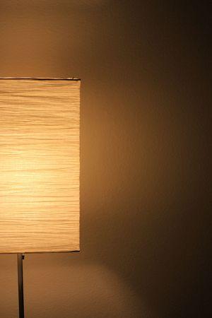 light fixture: Paper light fixture