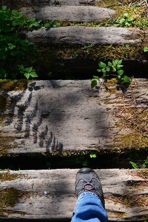 downward: Downward shot of hiker shoe on wooden bridge