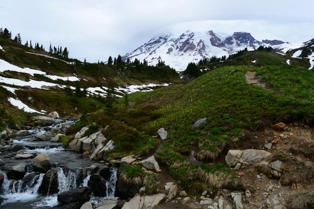 mt rainier: Mt. Rainier with stream in foreground
