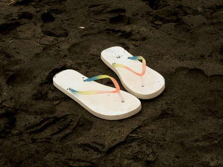 flops: Flip Flops in brown sand