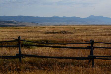 背の高い草と柵と山