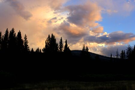 outdoorsman: Sunset with trees and cloudy skies