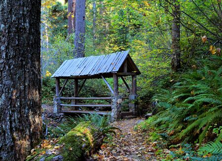 hiking path: Covered hiking path bridge in woods Stock Photo