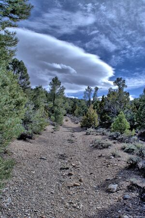 gravel road with trees and lenticular cloud