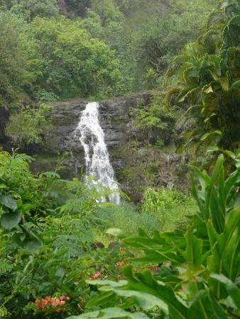 Waterval door groene landschap van hawaii Stockfoto