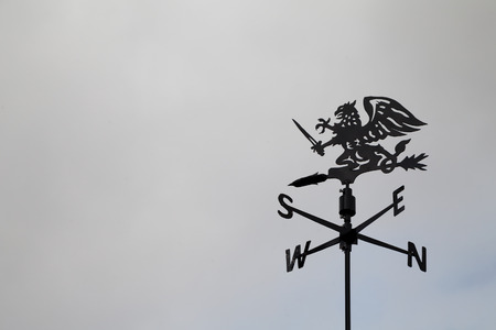 wind vane: Black dragon wind vane against the sky. Weather vane reflecting compass points