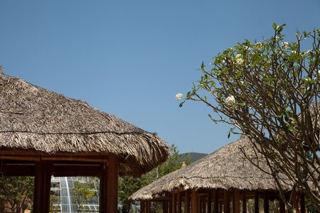 Thatched roof wooden gazebos in a garden. Tropical vacation relaxation at resort garden houses Stockfoto