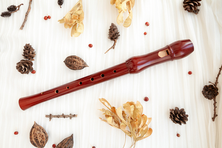 Brown wooden recorder flute. Woodwind musical instrument on white background decorated with natural forest elements Stockfoto - 124574870