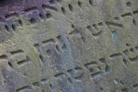 gusanos: Jewish Cemetery Worms, Alemania