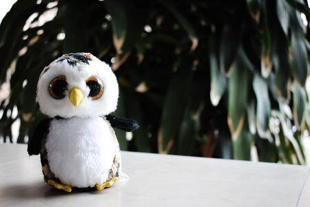 An owl doll with tree and space