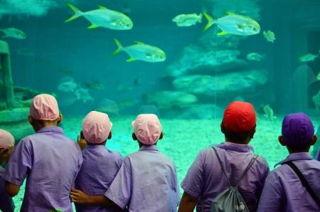 mus�e: enfants dans un aquarium