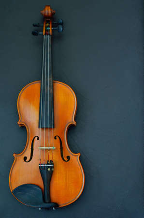 stringed: violin on black background