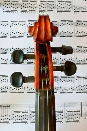 fiddle: violin head over music notes