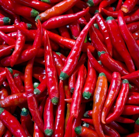 many red chillies photo