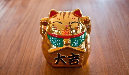 The Lucky cat photo