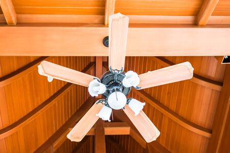 ceiling fan: Classical wood ceiling fan with white glass lamps