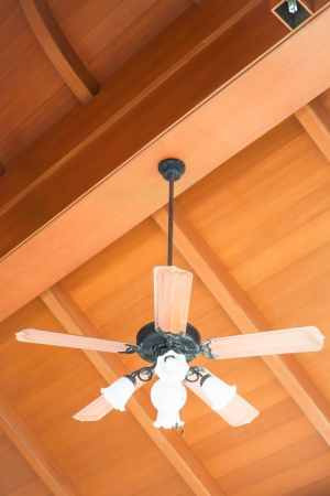 Beautiful hanging ceiling fan with glass lamps photo