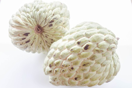 custard apple: Tropical fruit of custard apple isolated on white background Stock Photo