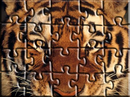 Jigsaw Puzzle Tiger Stock Photo
