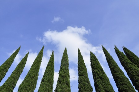 pointing to the sky, Aix en provence