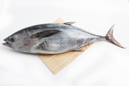 Fresh Japanese Fish on white background