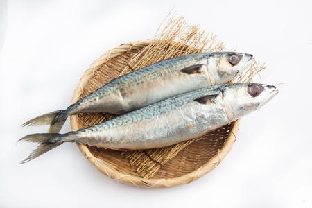 Fresh Japanese jack mackerel on white background 版權商用圖片