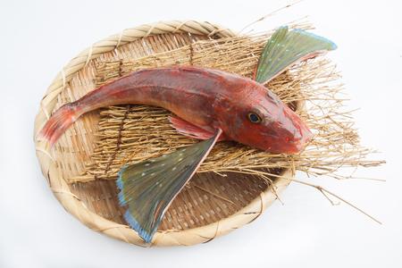 Pescado japonés fresco sobre fondo blanco.