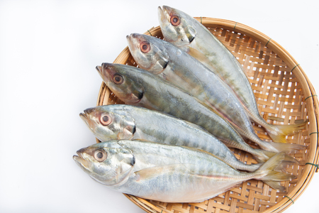 Fresh Japanese jack mackerel on white background Banque d'images