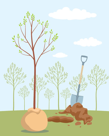 Planting tree. Save trees - day of forests. Orchard planting. Vector illustration