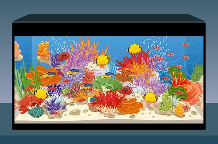 Marine reef saltwater aquarium with fish and corals. Vector illustration Vector Illustration