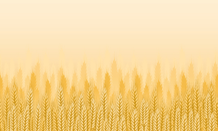 Wheat field background. Agricultural landscape seamless background. Vector illustration