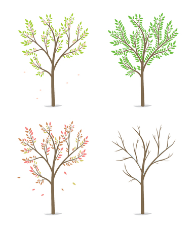 Four season with tree. Spring, summer, autumn and winter. Passing of time concept. Flat vector illustration