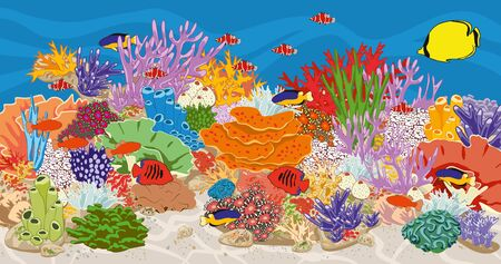 Marine reef saltwater aquarium with fish and corals. Coral reef in ocean. Underwater bottom scene in sea. Vector illustration