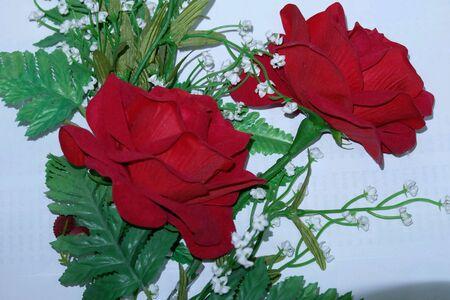 roses rouges: Roses rouges dans un r�ve. Banque d'images