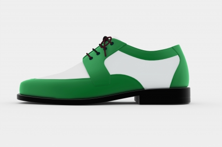Mans shoe rendered isolated green photo